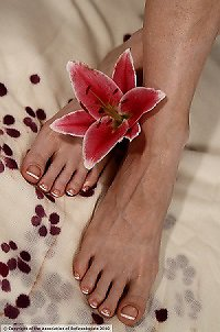 LR Holistics in Liss. mindful pink flower feet